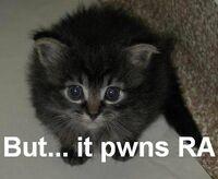 RA Pwnage Kitty