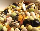 Lord Belar Seeds