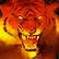 Tiger's Fury Tigrr