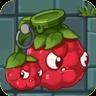Berry Blaster2