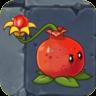 Pomegranate-pult2