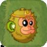 Monkeyfruit2
