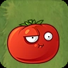 Tomato Splatst