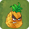 Prehistoric Pineapple2