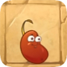 Chili Bean2