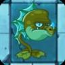 Sea Dragonst