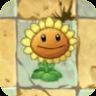 Sunflower2C
