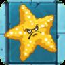 Sea StarfruitO