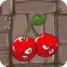 Cherry Bomb2