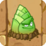 Bamboo Shoot2
