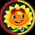 Solar FlareH