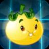 Solar Tomato2