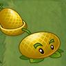 Cantaloupe-pult