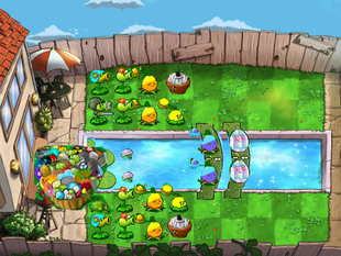 POOL PVZCC SCREEN