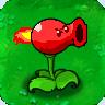 Burn Pea