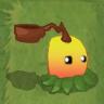 Mango Pult