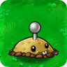 Potato Mine PvZ1