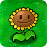 Sunflower PvZ1