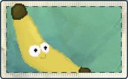 Bananarang Seed Packet