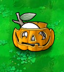 Imitater Chesa Slinger Pumpkin