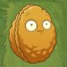 Wall-nut PvZ2