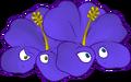 Violet Hibiscus.png