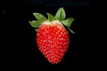 Strawberry BNC