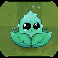 Submerge-mintinLawn