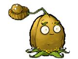 Nut-pult