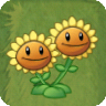 PVZIAT Twin Sunflower
