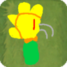 Flameflower