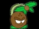Cocoknockout