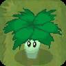 Umbrella Leaf (PvZ2-UEDLC)