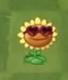 SunflowerValenbrainzCostume