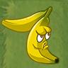 Banana Splitter