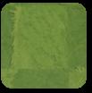 Plant Lawn Square