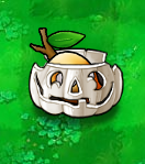 Chesa Slinger Imitater Pumpkin