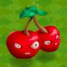 CherryBombPVZA