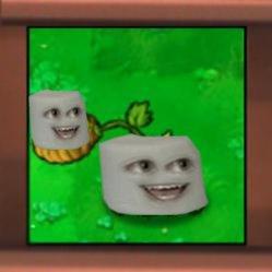 Marshmallow-pult
