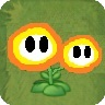 Twin Fireflower