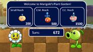 Marigold's Plant Garden 1