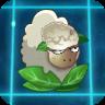 Lamb of Tartery2