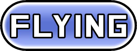 Flying Type