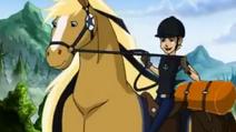 Huey Dewey & Louie's Stallions 24