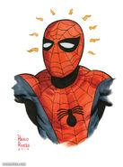 5517462-2016-nycc-spider-man-(ditko)