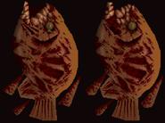 RotfishTexture