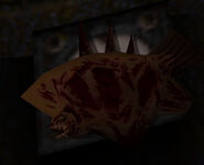 Rotfish corpse