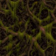 Wswamp1 2
