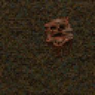 Grave02 3