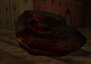 Rottweiler gibbed head